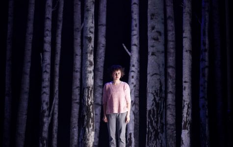 'Let the Right One In' terrifies and charms on-stage