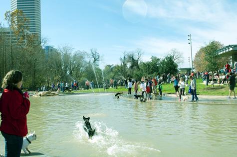 Johnny Steele Dog Park opens along Buffalo Bayou